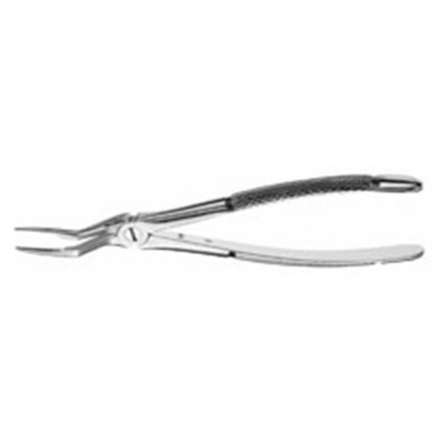 Forcep Root 97